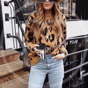 JANELLE Animal Print Softest Sweater